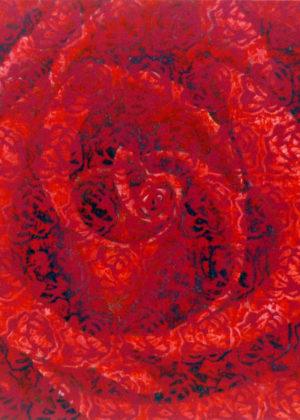 Rosa con rose